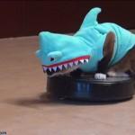 Un chat sur un robot aspirateur poursuit un canard en portant un déguisement de dinosaure