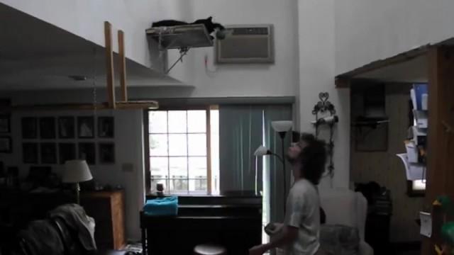 Il jongle avec son chat