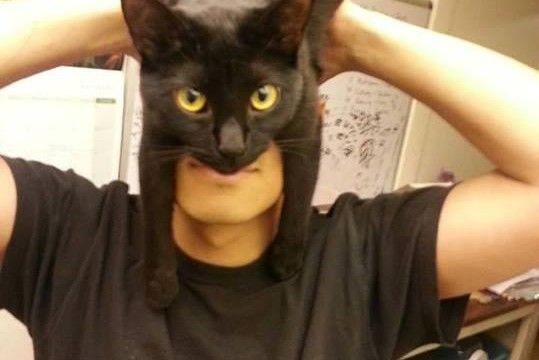 Il se transforme en Batman grâce à son chat
