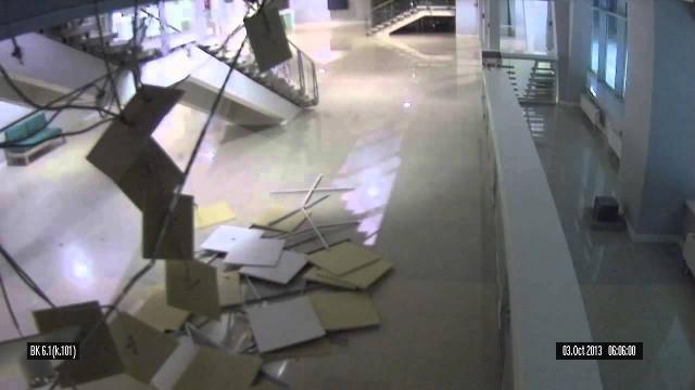 Un chat détruit l'Adler Arena à Sotchi