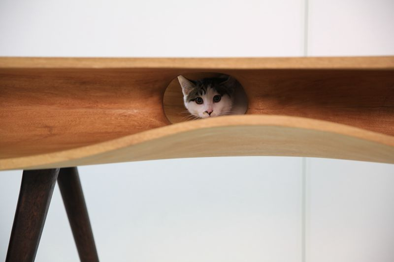 chat-table