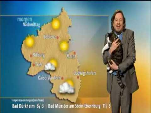 Un Chat interrompt la Météo sur une Chaîne allemande !
