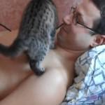 Ce Chat aime VRAIMENT son Maître