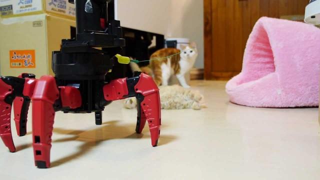 HILARANT : Des Chatons contre un Robot
