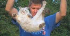 La chute d'un chat filmée au ralenti (et retombant sur ses pattes !)