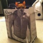 Un chat dans un sac Abercrombie