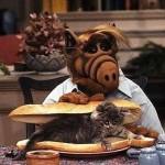 Alf se fait un sandwich au chat