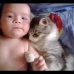 Un chat fait des câlins à un bébé