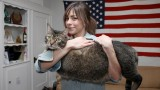 C'est ce que j'appelle un très gros chat