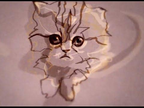 Un clip avec des chats animés