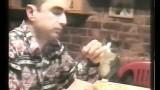 Un Chat fait des Signes pour Avoir à Manger